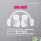2Bic Mini Album Vol. 2 - Soul Mate