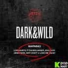 BTS Album Vol. 1 - Dark&Wild