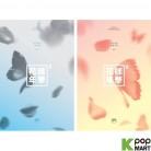 BTS Mini Album Vol. 4 - In the Mood for Love pt.2