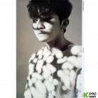 [Poster] Seventeen Mini Album Vol.3 - Going Seventeen (DNO)